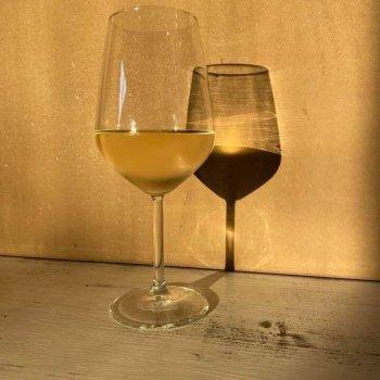 Borgo Divino - Enoteca a Treviso - Calici di vino rosso e bianco
